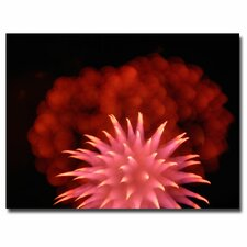 <strong>Trademark Fine Art</strong> 'Abstract Fireworks' Canvas Art