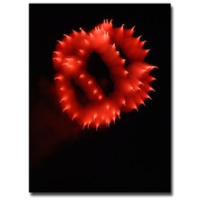 <strong>Trademark Fine Art</strong> 'Abstract Fireworks III' Canvas Art
