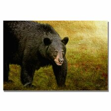 <strong>Trademark Fine Art</strong> 'Big Black Bear' Canvas Art