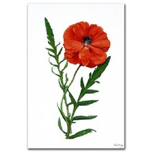 <strong>Trademark Fine Art</strong> 'Poppy' Canvas Art