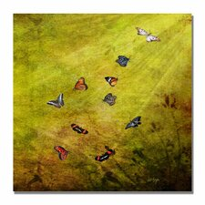 'Butterfly in the Sky' by Lois Bryan Painting Print on Canvas