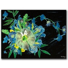 <strong>Trademark Fine Art</strong> 'Meteor Shower' Canvas Art