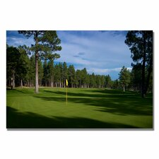 <strong>Trademark Fine Art</strong> Afternoon on the Green Canvas Golf Art
