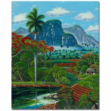 <strong>Trademark Fine Art</strong> 'Coneccion Natural' Canvas Art