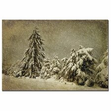 <strong>Trademark Fine Art</strong> 'Winter's Wrath with Snow' Canvas Art