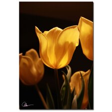 <strong>Trademark Fine Art</strong> 'Yellow Bouquet' Canvas Art