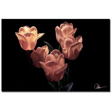 <strong>Trademark Fine Art</strong> 'Pink Blooms' Canvas Art