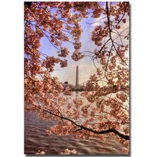 <strong>Trademark Fine Art</strong> 'Cherry Blossoms at the Washington Monument' Art