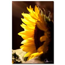<strong>Trademark Fine Art</strong> 'Sunflower II' Canvas Art
