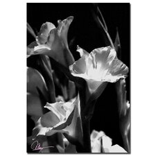 <strong>Trademark Fine Art</strong> 'Gladiolus VII' Canvas Art