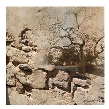 <strong>Trademark Fine Art</strong> 'Rock and Tree' Canvas Art