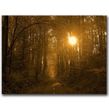 <strong>Trademark Fine Art</strong> 'Morning Awaits II' Canvas Art