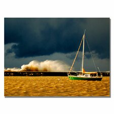 <strong>Trademark Fine Art</strong> 'Lake Erie Storm' Canvas Art