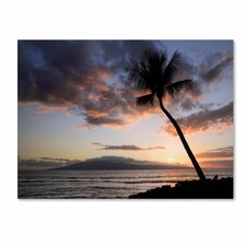 'Palm Tree Maui' by Pierre Leclerc Photographic Print on Canvas