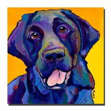 'Buddy' by Pat Saunders-White Painting Print on Canvas