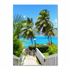 <strong>Trademark Fine Art</strong> 'Virgin Islands 3' Canvas Art