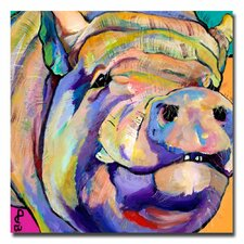 <strong>Trademark Fine Art</strong> 'Potbelly' Canvas Art