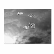 <strong>Trademark Fine Art</strong> 'Lily Pads and Sky' Canvas Art