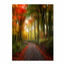 <strong>Trademark Fine Art</strong> 'The Lost Path' Canvas Art