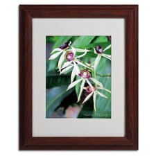 """Orchids II"" Framed Art"