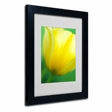 """Hint of a Tulip"" Framed Art"