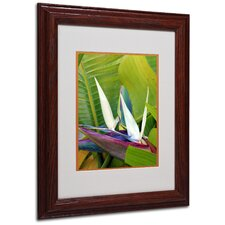 "<strong>Trademark Fine Art</strong> ""Paradise Color"" Matted Framed Art"