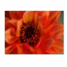 """Fiery Dahlia"" Canvas Art"