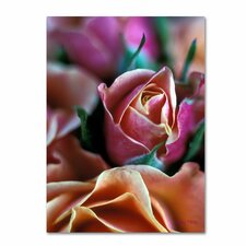 "<strong>Trademark Fine Art</strong> ""Mauve and Peach Roses"" Canvas Art"