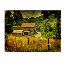 "<strong>Trademark Fine Art</strong> ""Country Road In Summer"" Canvas Art"