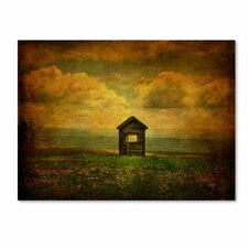 """""""Field of Dandelions"""" by Lois Bryan Photographic Print on Canvas"""