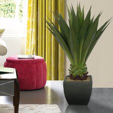 "43"" Realistic Giant Aloe Plant in Contemporary Planter"