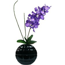 Real Touch Vanda Orchid in Ceramic Container