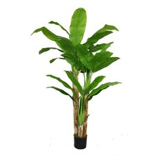 Banana Tree with Real Touch Leaves