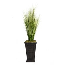 Tall Onion Grass in Square Tapered Fiberstone Decorative Vase