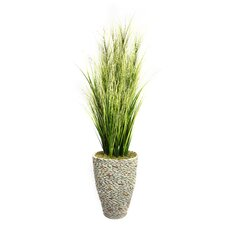 Tall Onion Grass in Round Tapered Fiberstone Pot