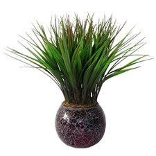 Grass in Round Mosaic Pot (Set of 2)