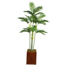 Tall Palm Tree in Fiberstone Planter