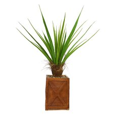 <strong>Laura Ashley Home</strong> Tall Agave Floor Plant in Fiberstone Planter