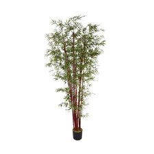 <strong>Laura Ashley Home</strong> Harvest Bamboo Tree in Pot