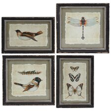 Acantha 4 Piece Framed Graphic Art (Set of 4)