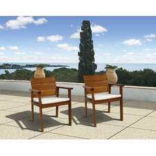 <strong>International Home Miami</strong> Amazonia Vincent Chair with Cushion (Set of 2)