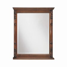 Bombay Lightly Antiqued Rectangular Bathroom Mirror