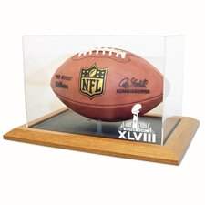 Super Bowl 48 Natural Color Zenith Football Display