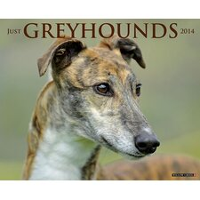 <strong>Willow Creek Press</strong> Greyhounds 2014 Wall Calendar