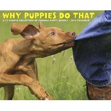 <strong>Willow Creek Press</strong> Why Puppies Do That 2014 Wall Calendar