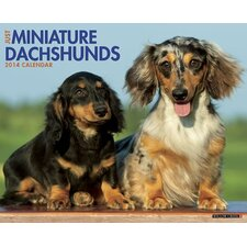 <strong>Willow Creek Press</strong> Mini Dachshunds 2014 Wall Calendar