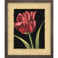 Floral Living Vibrant Tulips IV Framed Wall Art