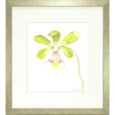 Floral Living Orchid Beauty 1 Framed Graphic Art