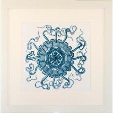 Seaside Living Ocean Gems II Framed Graphic Art in Teal