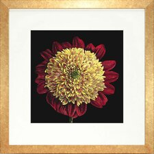 <strong>Indigo Avenue</strong> Floral Living Dramatic Bloom II Framed Wall Art